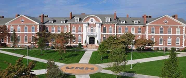 new haven university